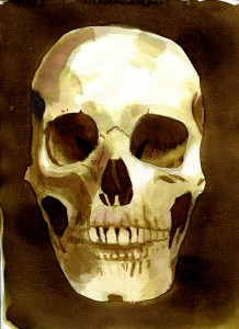 All Things Body into image human skull